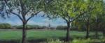 Zicht-op-molen-de-Noordstar---Noordbroek-(Gr) 2013
